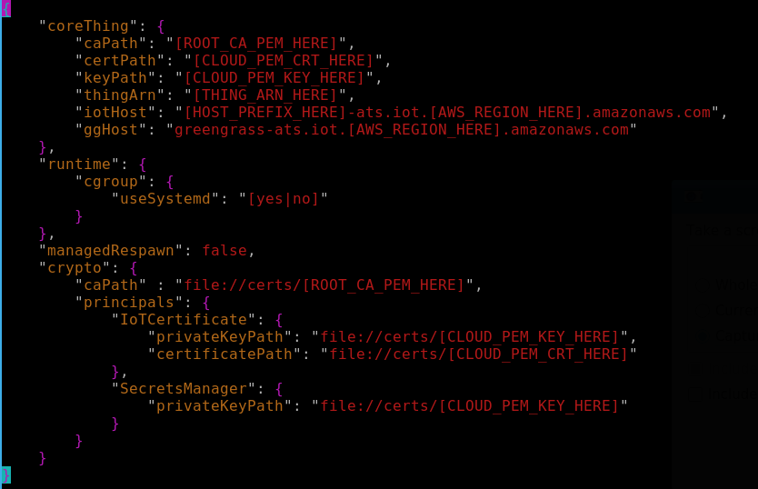 default config.json