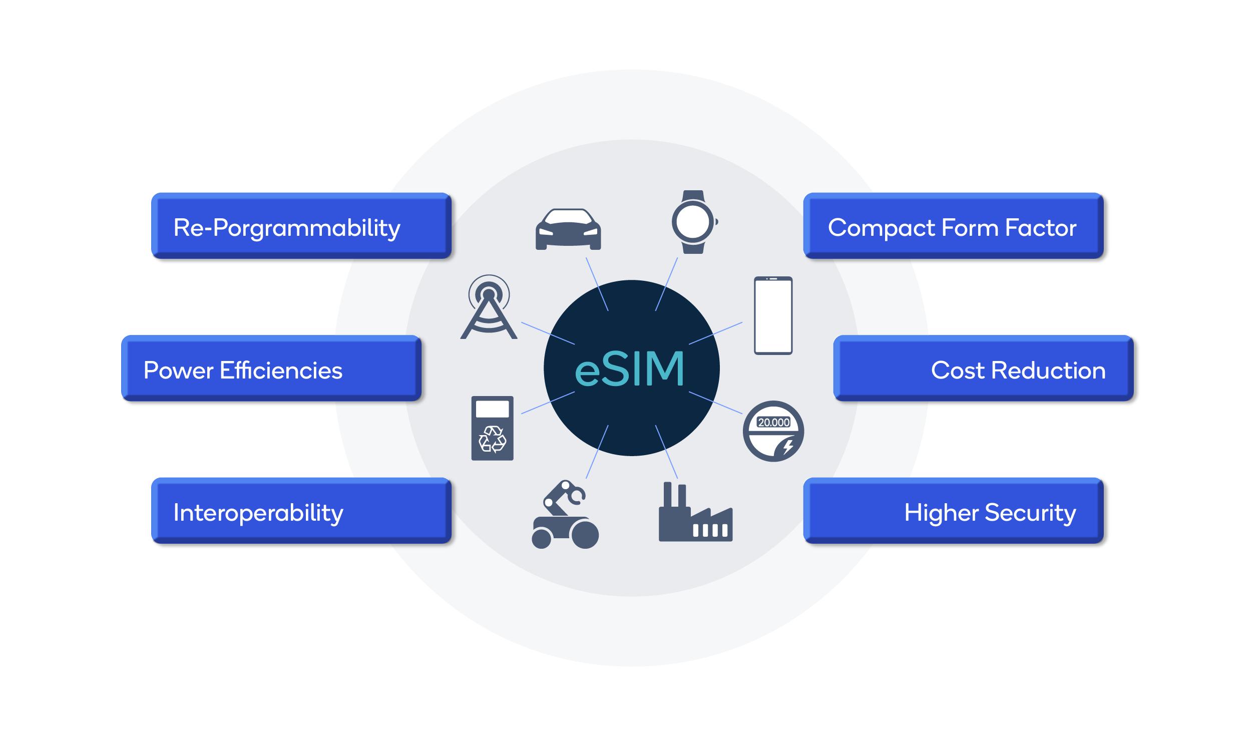 eSIMS Image 2